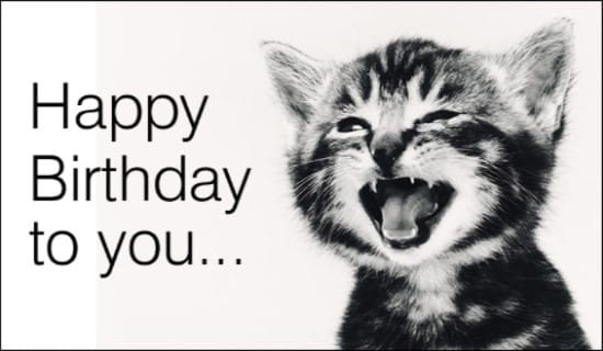 cat birthday cards free online