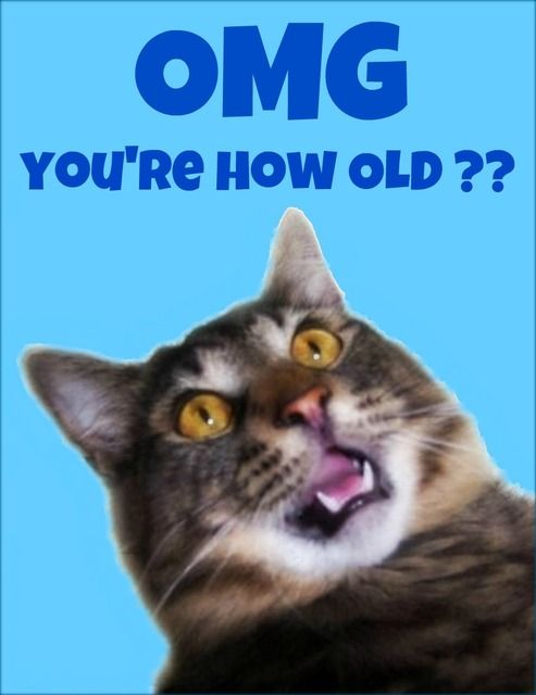 cat birthday cards online