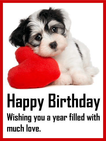 dog birthday card messages