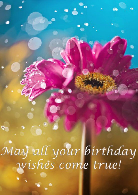 funny birthday cards for friends on facebook